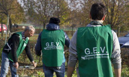 Guardie Ecologiche Volontarie, GEV