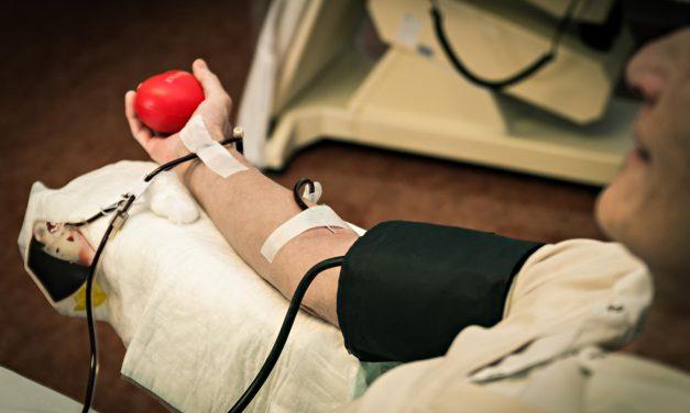 Il donatore di sangue: la plasmaferesi