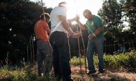 Storie di volontariato toscano