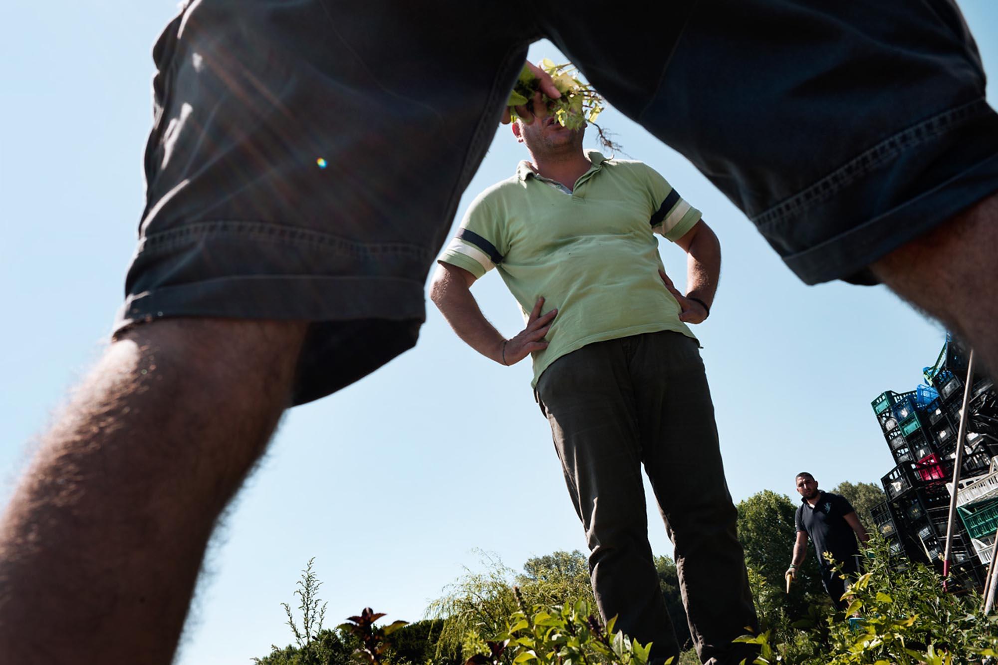 0037 volontariato nei campi 1 - Storie di volontariato toscano