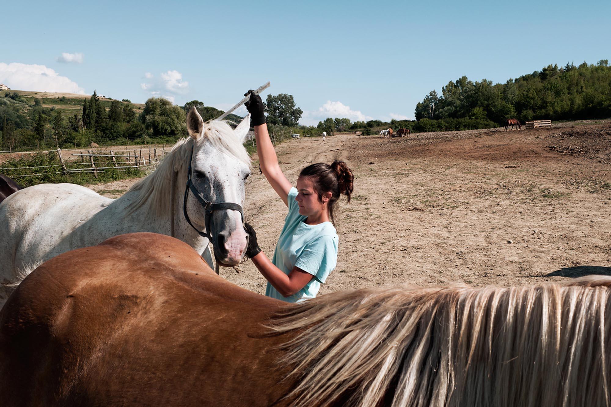 0037 volontariato protezione animali - Storie di volontariato toscano