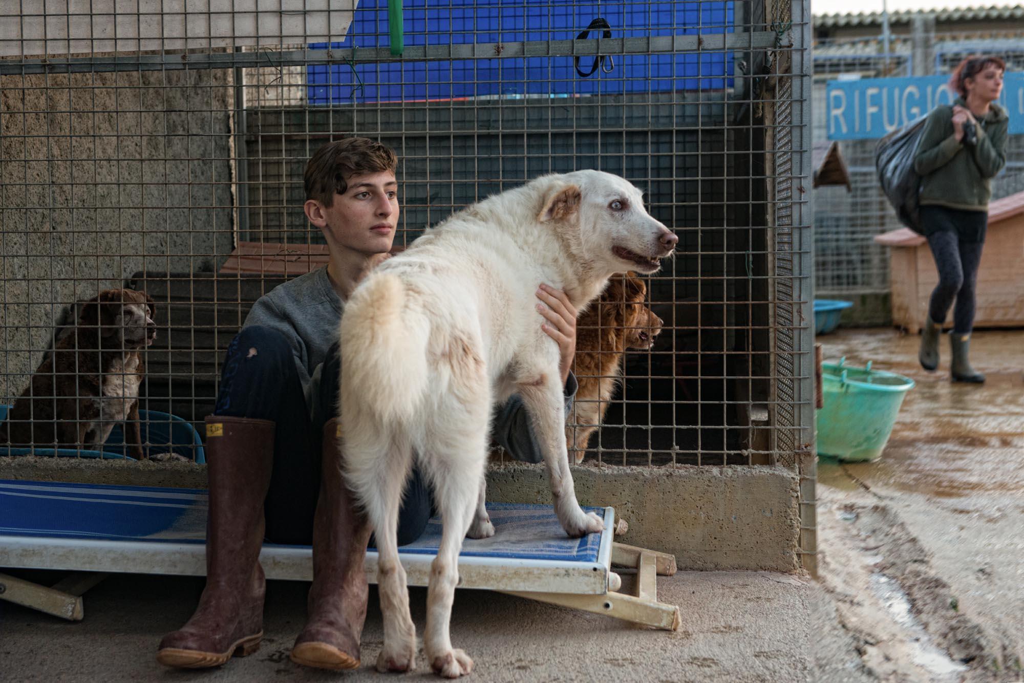 0043 Volontari in un rifugio per cani 1 - Canile, il rifugio