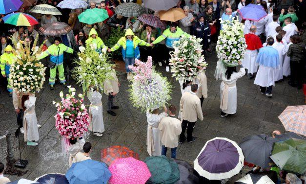 Processione delle paniere