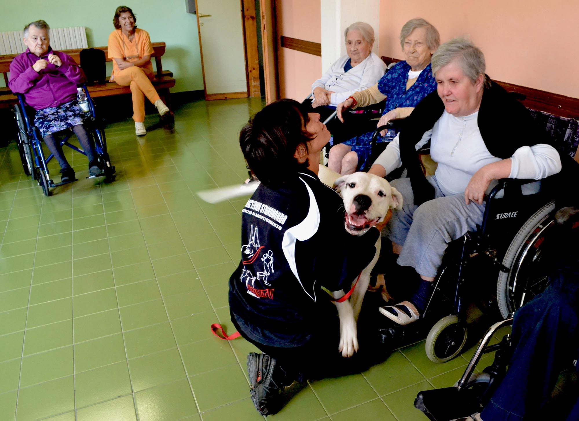 0133 Pet therapy con persone anziane 2 - Pet Therapy con anziani