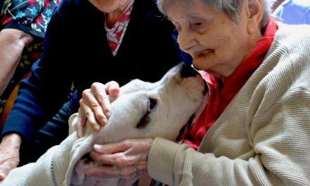 Pet Therapy con anziani