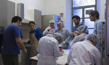 Centro diurno per disabili, Francesca e i suoi amici