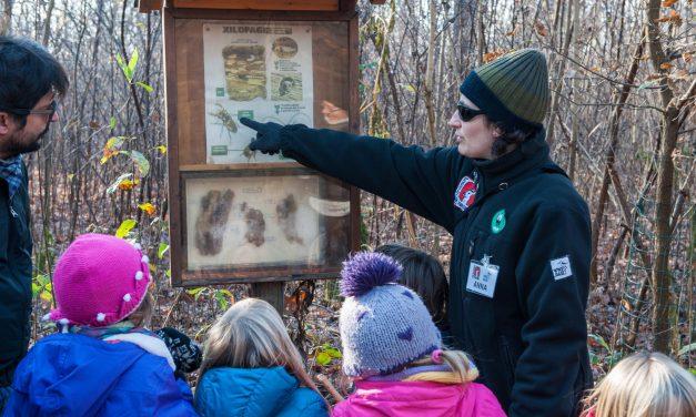 Volontari WWF, volontari per natura