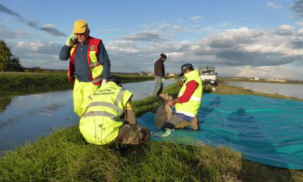 Emergenza ambientale, messa in sicurezza del canale Fumolenta