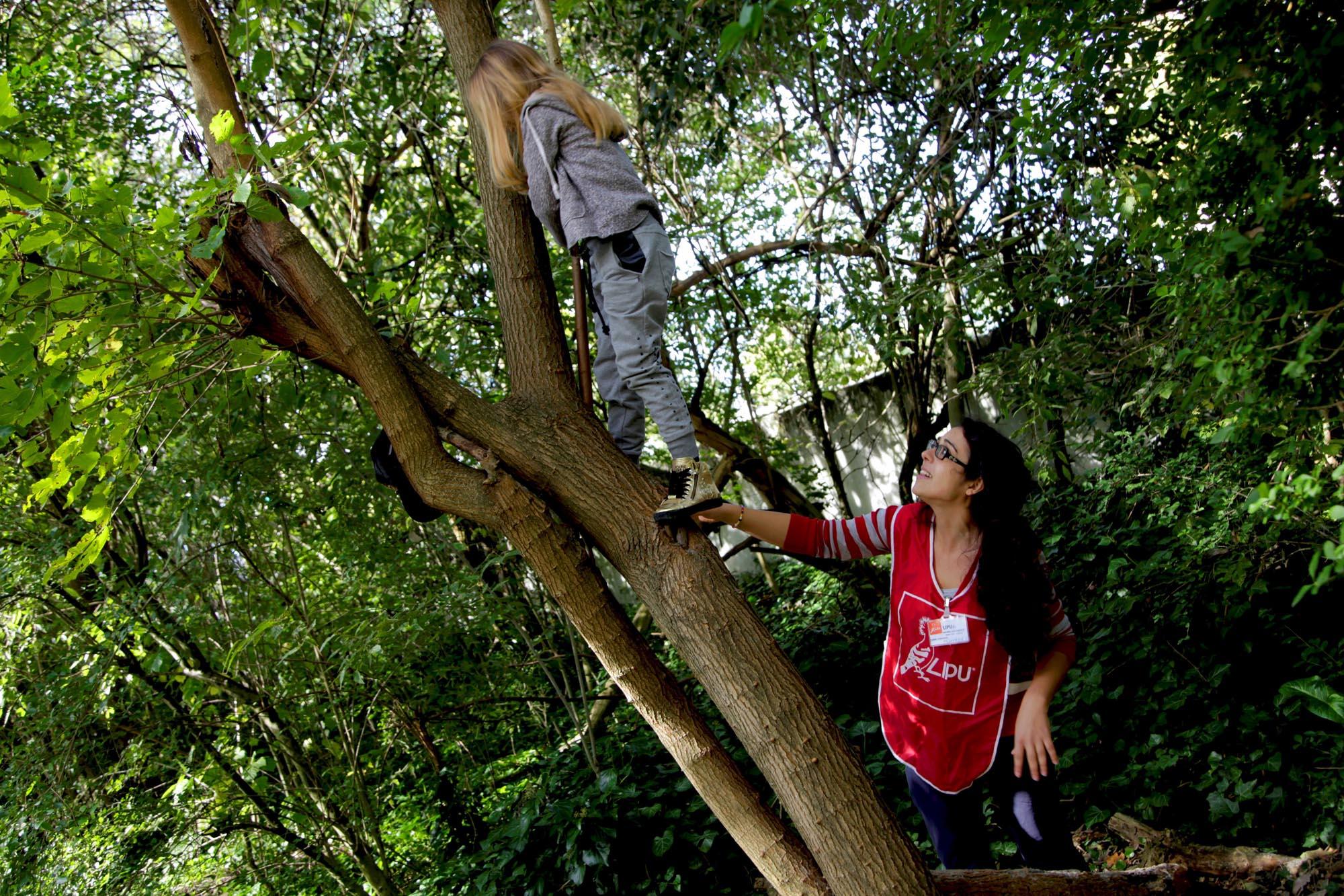 volontari lipu bambino albero - Volontari della LIPU